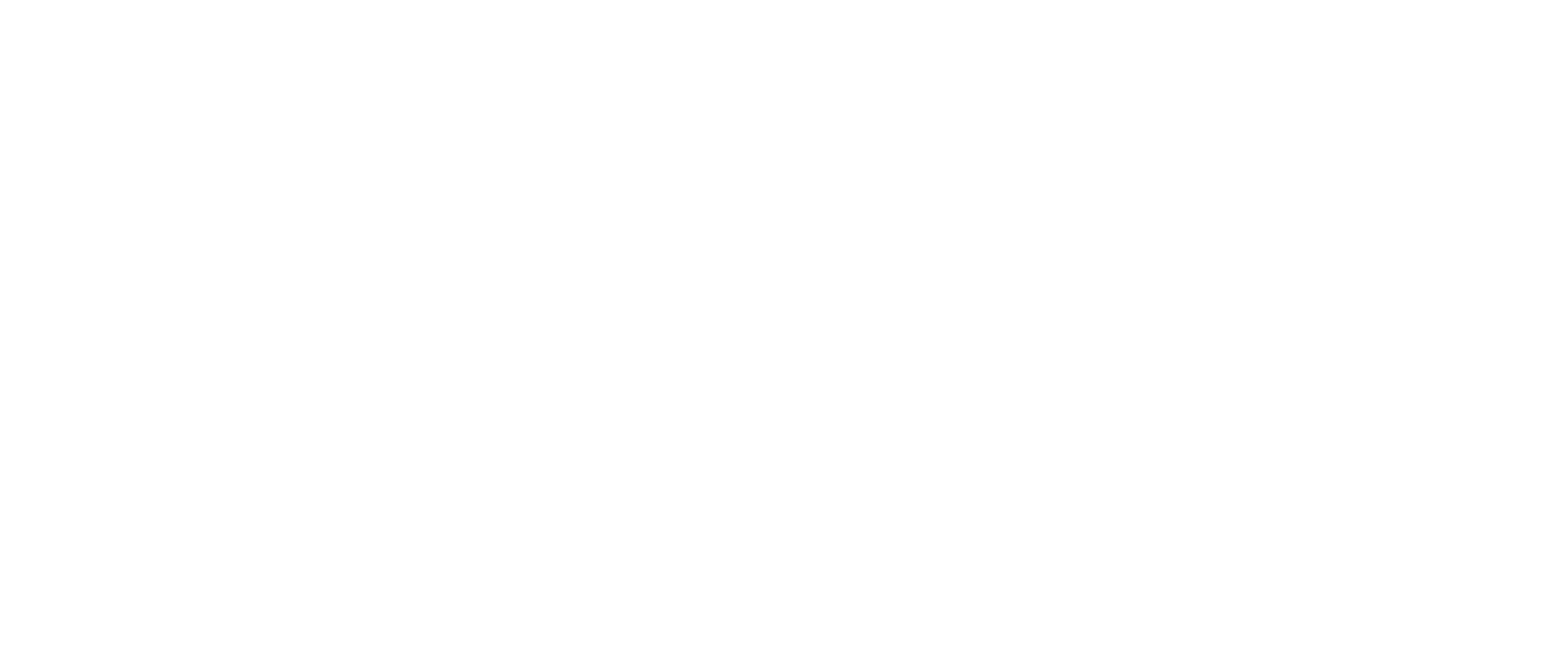 Ansay louise Logo