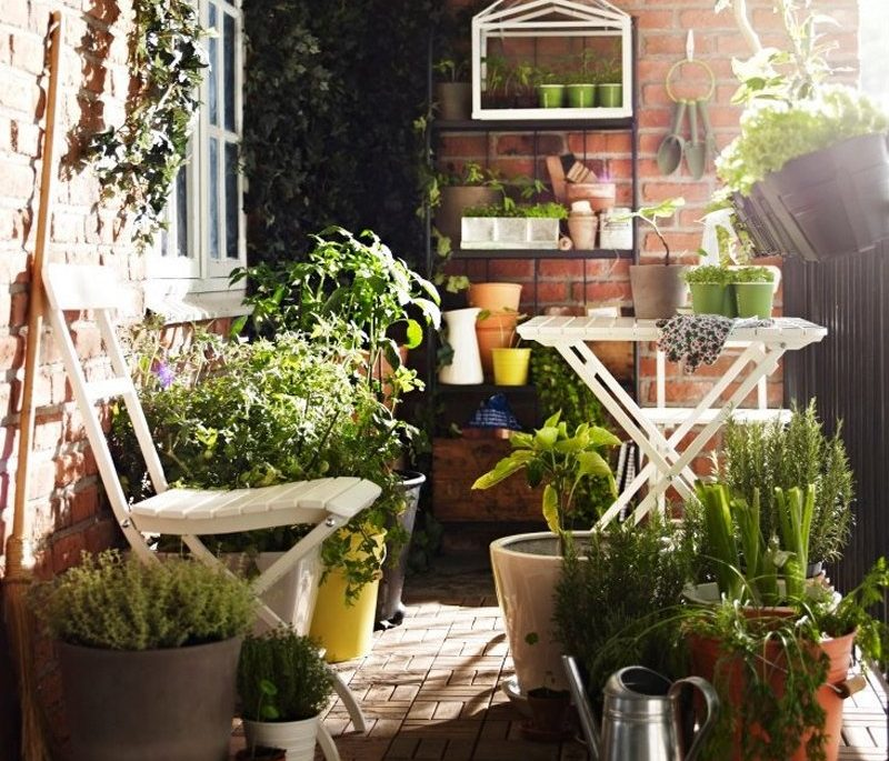 Balcon - jardinet