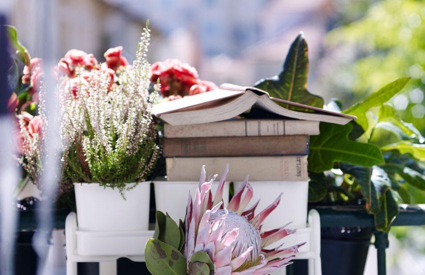 Petits Pots De Fleur Avec Support Balcon Ikea Architecte D Interieur Decoratrice A Reims Louise Ansay