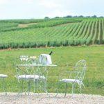 L'écrin des vignes | Le jardin