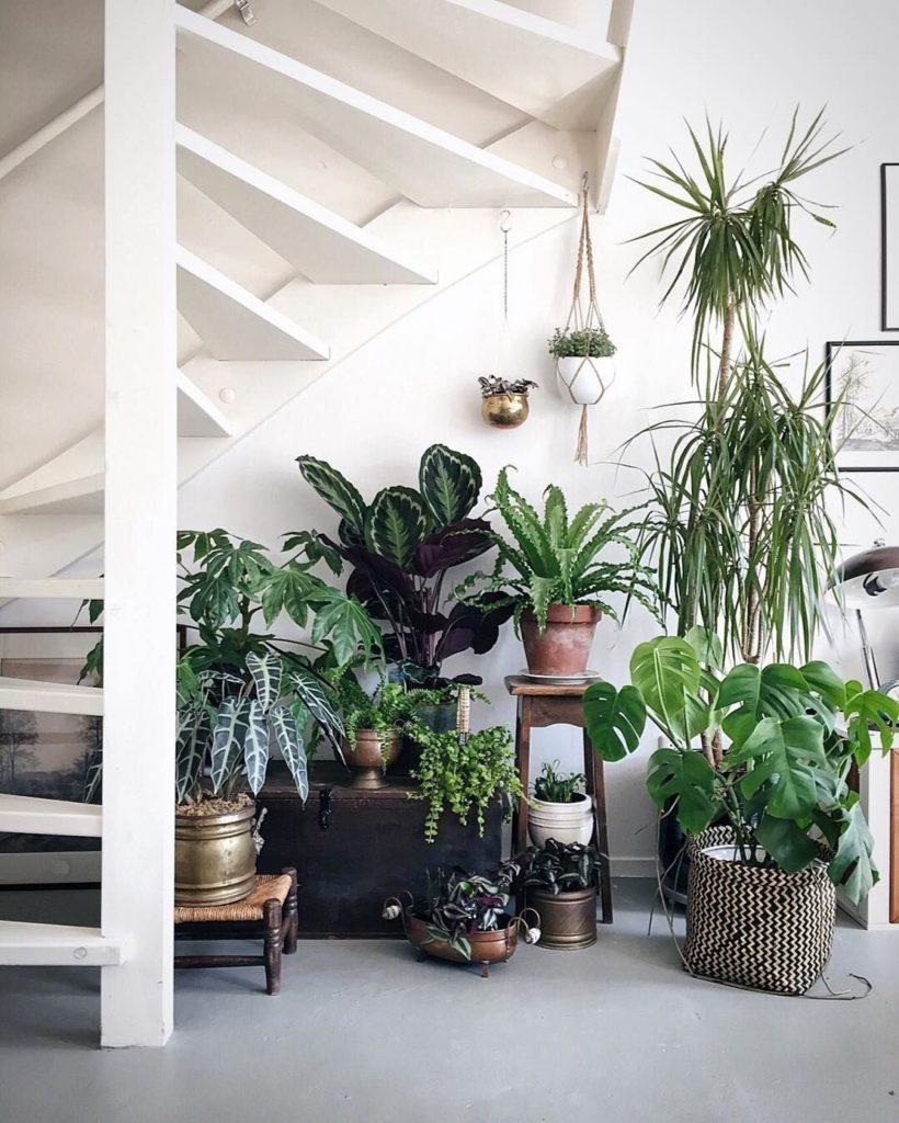Un jardin en sous escalier | via Pinterest